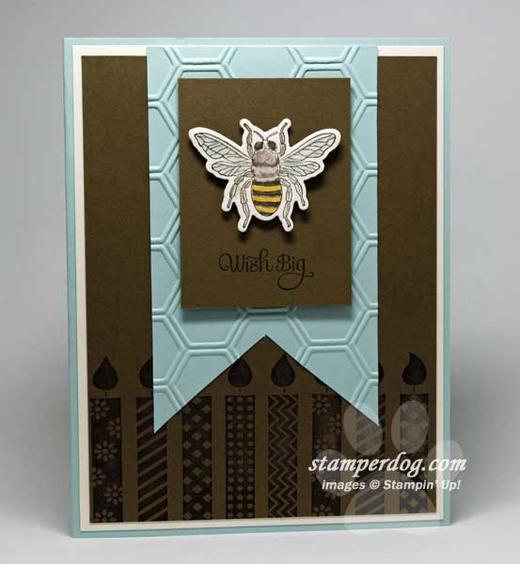 Masculine Birthday Card | Stampin' Up! Demonstrator Ann M ...