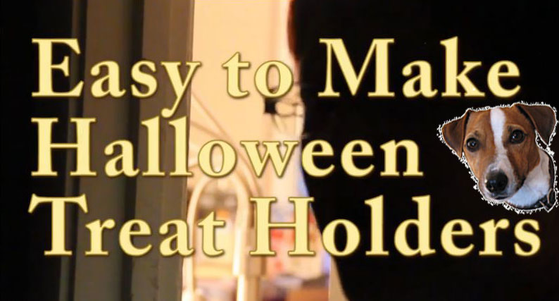 Video:  How to Make a Quick and Easy Halloween Treat Holder