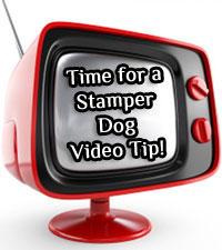 Video Tip