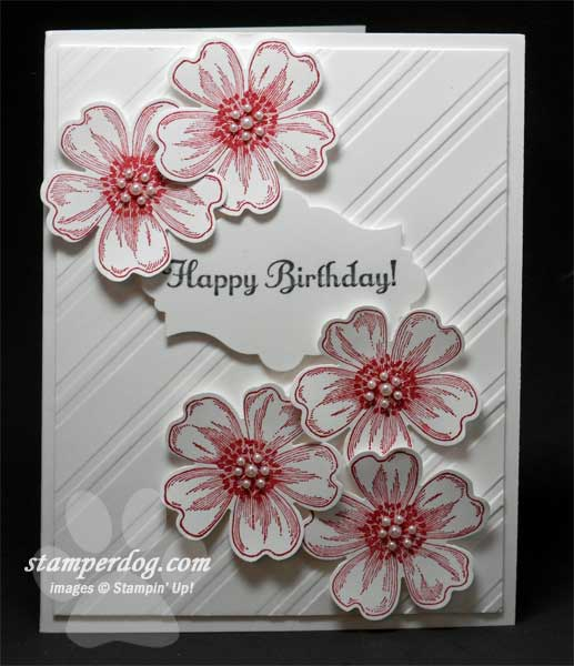 Pretty quick and clean birthday card stampin up demonstrator ann with her when were working on our thank you cards that we mail when you shop in our online store you could say shes on my design team birthday card bookmarktalkfo Images