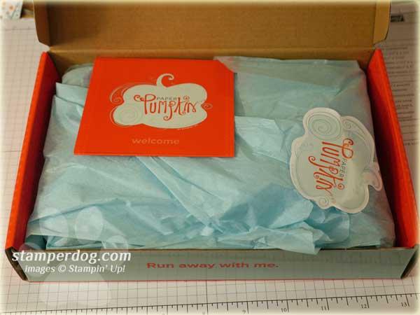 Paper Pumpkin Starter Box
