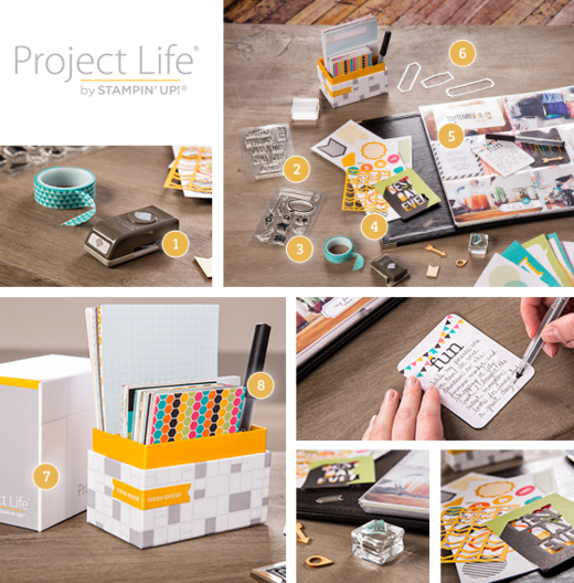 ProjectLifeProducts