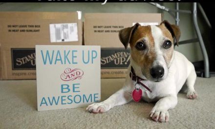 Wake Up & Be Awesome!