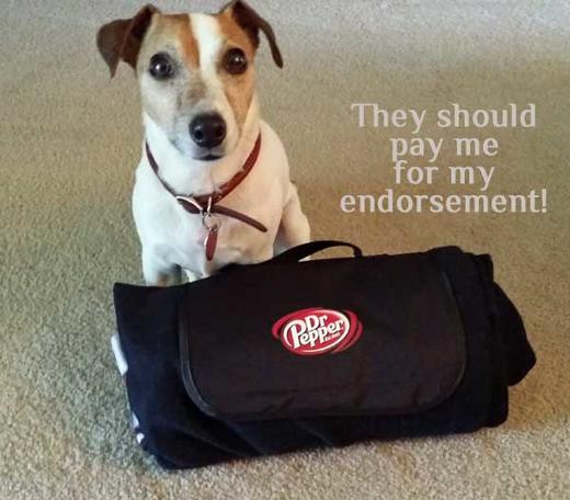 108-BlanketFold-Endorse
