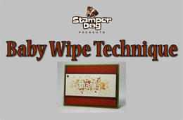 Baby Wipe Technique Video