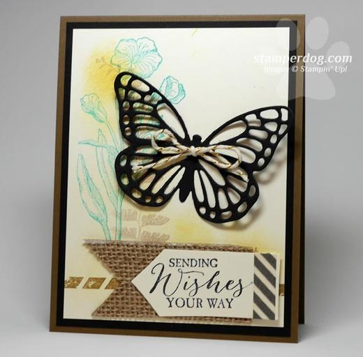 Butterfly Basics Card