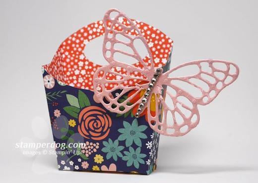 Butterfly Fry Box-1