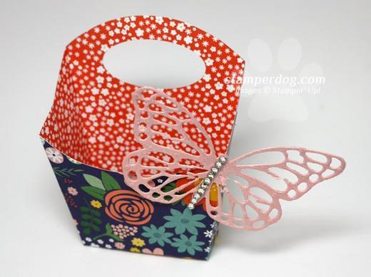 Butterfly Fry Box-2