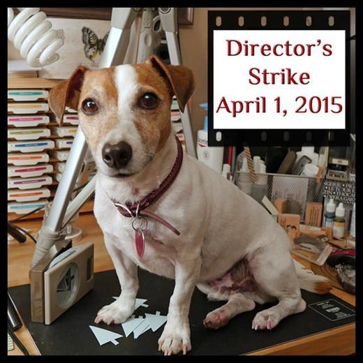 Directors Strike