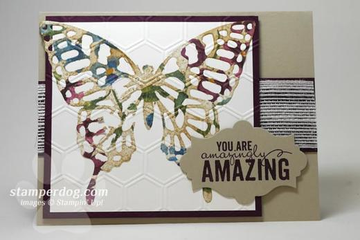 Sahara Butterfly Card