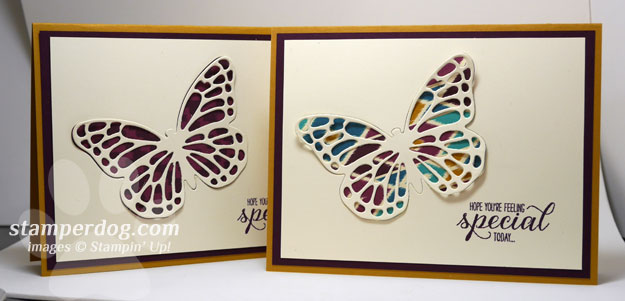 Butterfly Specials Card