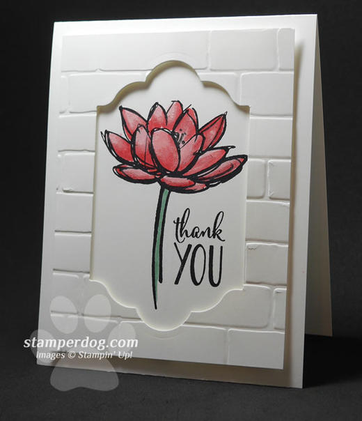 Waterlily Thank You Card