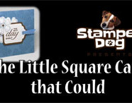 The Little Square Card That Could Video
