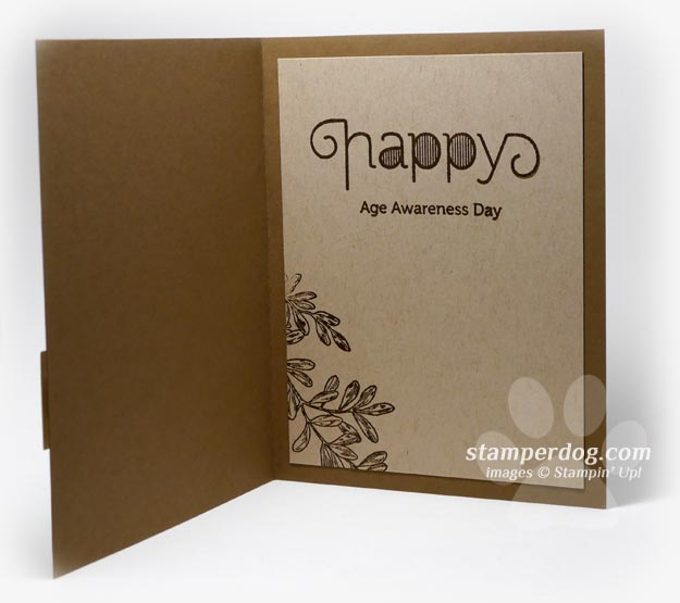 Make A Masculine Birthday Card Stampin Up Demonstrator Ann M