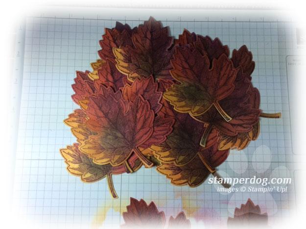 September Vintage Leaves