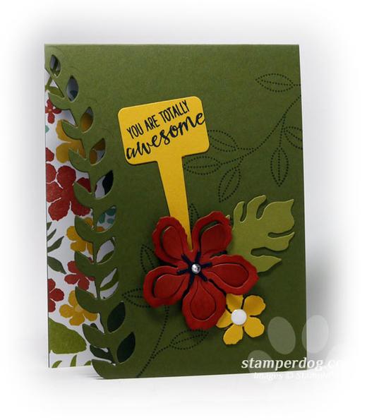 Peekaboo Card