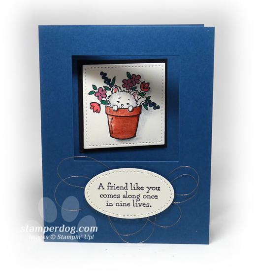 Cat Lovers Card