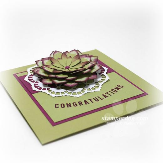 Square Congratulations Card