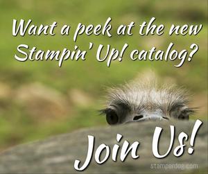 Stampin' Up! Catalog Sneak Peek