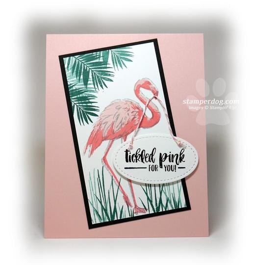 Flamingo Congratulations Card