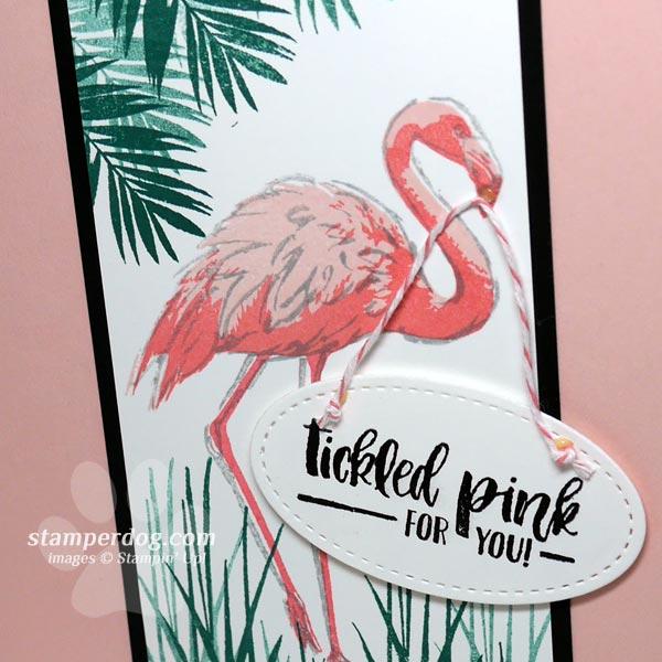 Flamingo Congratulations Card