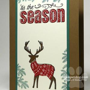 Red Sweater Reindeer Christmas Card
