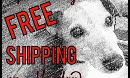 Free Shipping One Day Only!