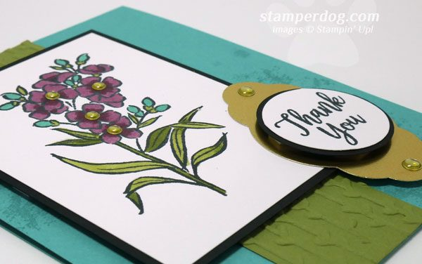 I Love This Stamp Set!