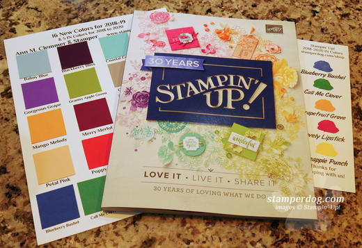 18-19 Stampin' Up! Catalog