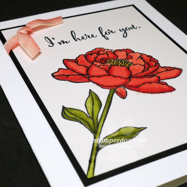 Everyone Needs a Flower Card & a Sale!