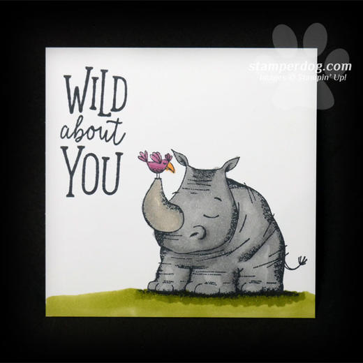 Wild About You Puzzle Card