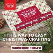 Christmas Craft Kit Surprise