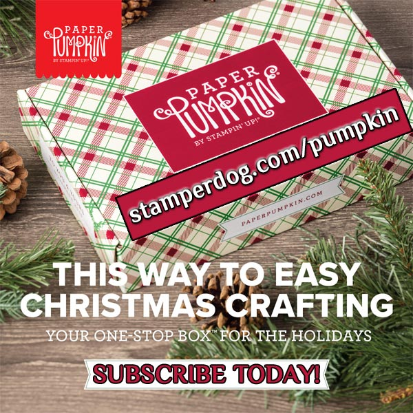 Christmas Craft Kit Surprise
