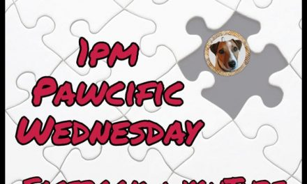 Join the Stamp Groove at 1pm Pawcific