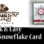 Last Day for Snowflakes and Video