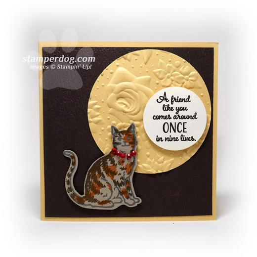 Add a Little to a Card for Your Cat Lover