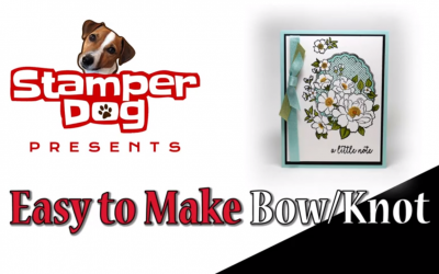 How to Make a Bow Video
