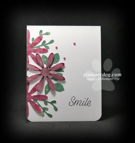Glossy Card Stock Daisy