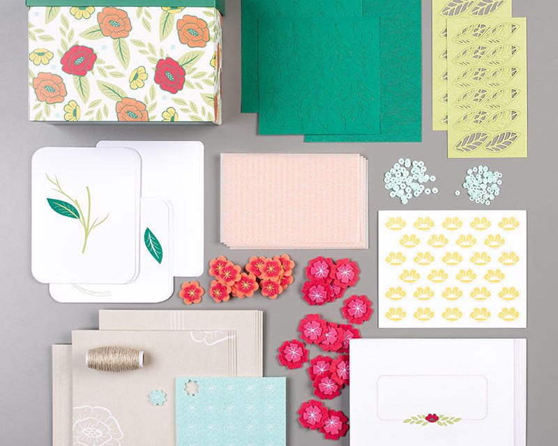 Check Out the Felt Cards Kit!