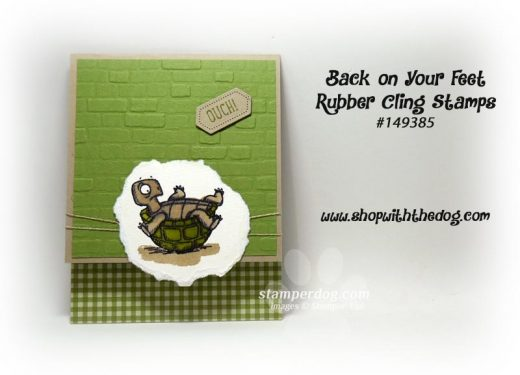 Turtle Get Well Card
