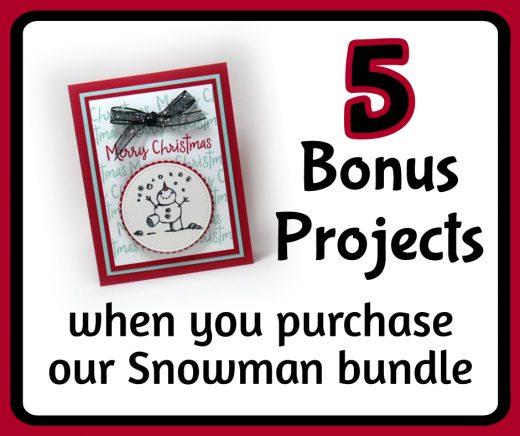 Special Snowman Bundle