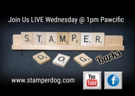 We're Going Live at 1pm