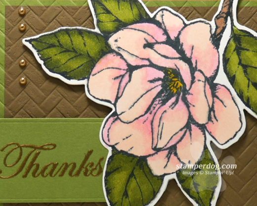 Special Thank You Card