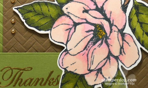 Making a Special Thank You Card