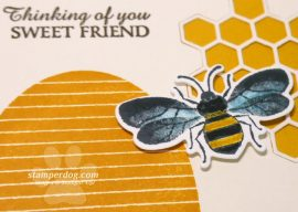 Sweet Honey Bee Card for a Friend