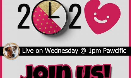 Valentine Season Live at 1pm Pawcific