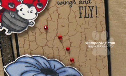 Loving a ladybug Card