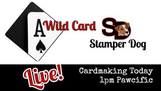 Wild Card Craft Break