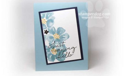 Super Fast and Fabulous Card