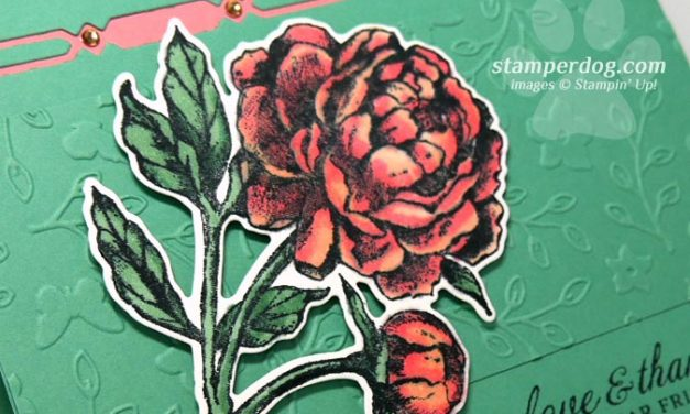 Prized Peony Watercolor Card
